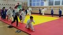 Тренировка Алексея Стешенко. Дзюдо. Judo
