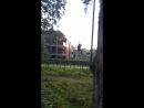 Тарзан-парк 8