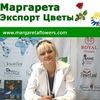 Margareta Vasilita