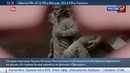Новости на Россия 24 • Поклонская сняла клип на военную песню