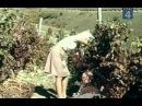 Варькина земля (1969) 3 серия фильм смотреть онлайн