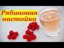 Рецепт настойки из красной рябины Рябиновка