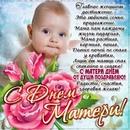 Елена Калмыкова фото #18
