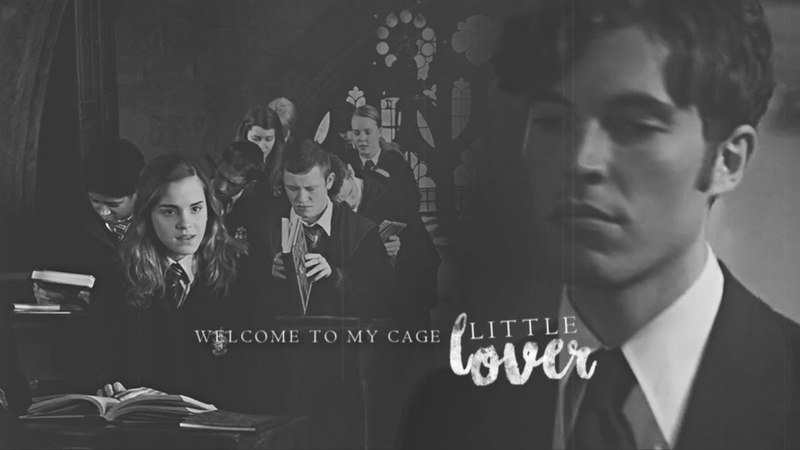 Hermione Tom - Welcome to my cage little lover |AU|