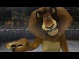 Madagascar 1 Film Complet Francais. Мультфильм Мадагаскар на французском языке