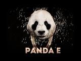 GYGO - Panda E (DJ L!ON REMIX) #PR1MYERA