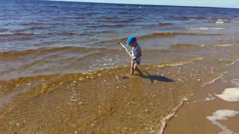 Море mp4