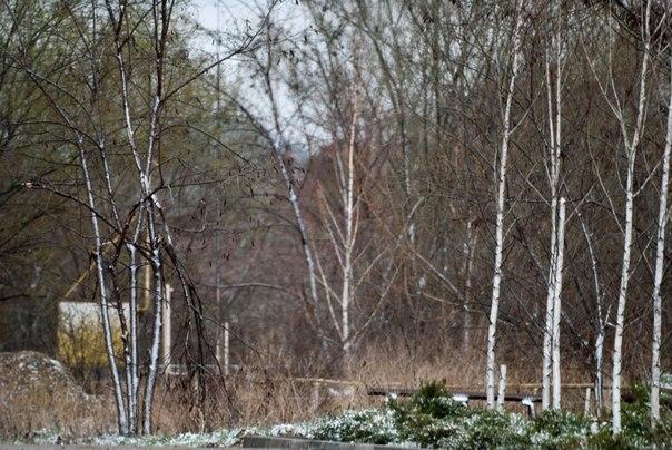 снег 29 марта, Пятигорск