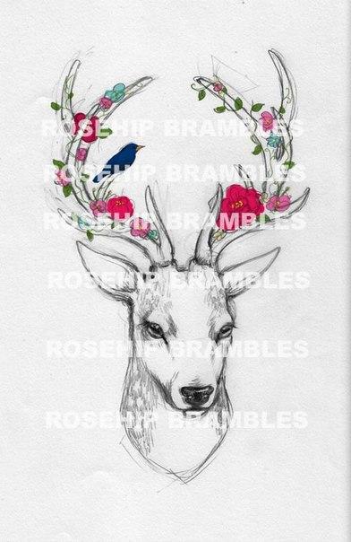 Эскизы для тату с оленями