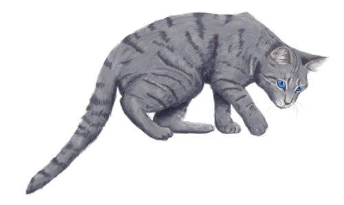 Коты воители длинные малые - baf