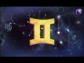 13 знаков зодиака. Близнецы
