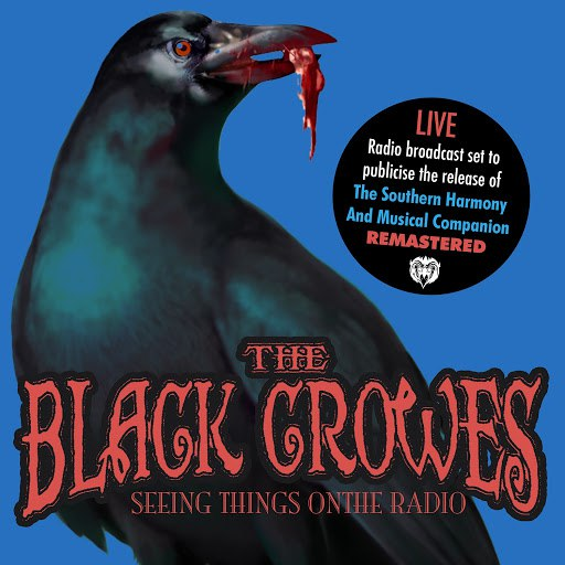 The Black Crowes альбом Seeing Things On The Radio (Remastered) [Live Stereo FM Radio Broadcast Set. Jul 5th '92]