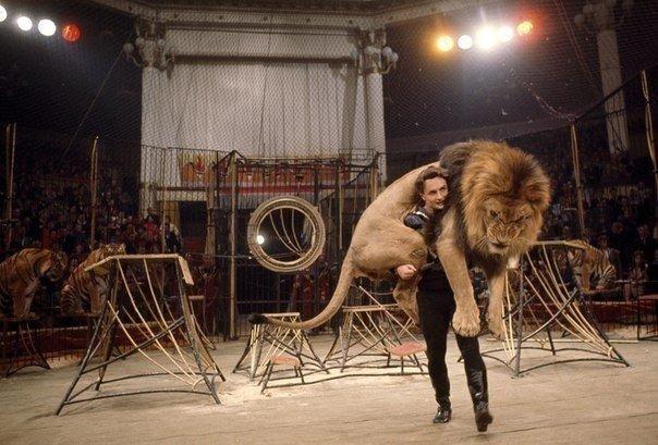Дрессировщик несет 136-килограммового льва на арене цирка в Москве, март 1966.