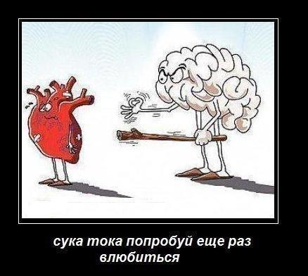 подсека: