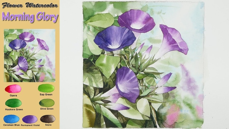 Morning Glory - Drawing Flower Landscape Watercolor (wet-in-wet. Fabriano rough) NAMIL ART