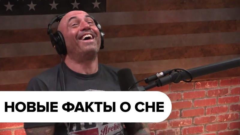Подкаст Джо Роган о сне с Мэтью Уокером - 1109 [Озвучка]