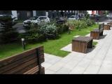 zvezdaforum.com: мини ботанический сад во дворе - полностью благоустроен, очень красиво получилось
