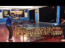 前國家乒乓省隊 楊光教練 反手快撕詳解 Close-to-table fast backhand loop tutorial by Coach Yang Guang