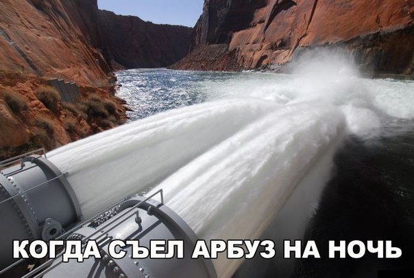 http://cs543100.vk.me/v543100129/8a754/VzK04PVoTSs.jpg