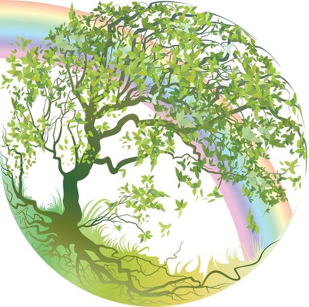Дикорастущие деревья и кустарники, как определить что годится, а что нет.  Как создать на участке...