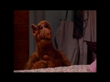 Alf Quote Season 1 Episode 2 Темница