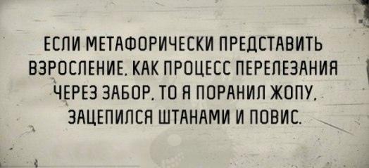 Peter Gross | Санкт-Петербург