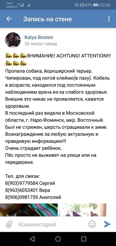 Алёнка Сергеева |
