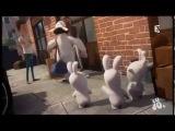 Бешеные кролики вторжение