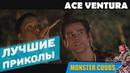 ЛУЧШИЕ ПРИКОЛЫ С ЭЙСОМ ВЕНТУРОЙ 1 Monster Coubs ПРИКОЛЫ VINE COUB КУБЫ КОУБ CUBE
