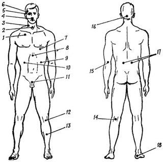 Уязвимые места (болевые точки) на теле человека; степень поражения и возможность сопротивления.