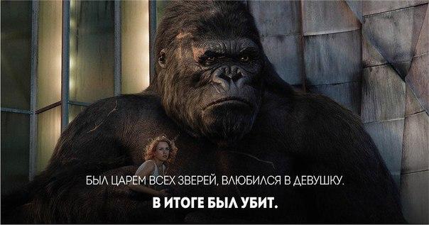 Фото №456246499 со страницы Василия Киоссе