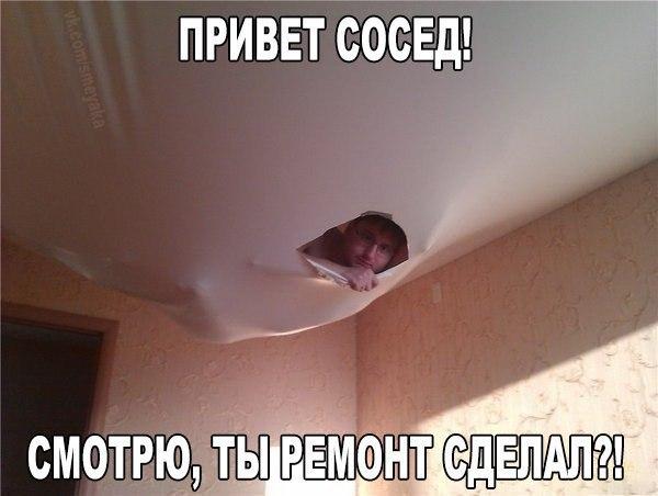 https://pp.vk.me/c543106/v543106818/18f95/6Q5Fui5je0I.jpg