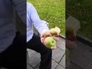 Новая традиция Московского Кремля - кушаем яблоки!