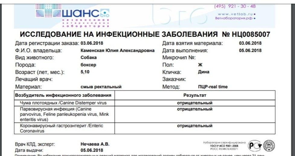 Москва, Дита, сука, 19.08.16 PPKgLK7G9Wo