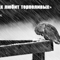 Шухратджон Турсунов, 23 декабря , id212495143