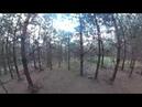 День 1 убегаем из города в деревню Валим лес для строительства забора ДОМ В ДЕРЕВНЕ