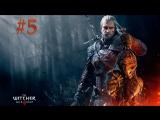 The Witcher 3 Wild Hunt - #5 Идем к успеху...