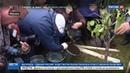 Новости на Россия 24 На день рождения Лужков высаживал деревья и дарил кепки