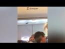 На пассажиров а к Россия рейса Сочи Санкт Петербург при посадке в Пулково полилось вино