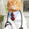 Ветеринарная клиника Пестрецы