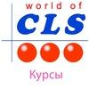 Курсы иностранных языков   CLSCHOOL