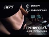 Тренировка на жиросжигание 27 минут | Все группы мышц | Workout | Fitness | Воркаут | Фитнес