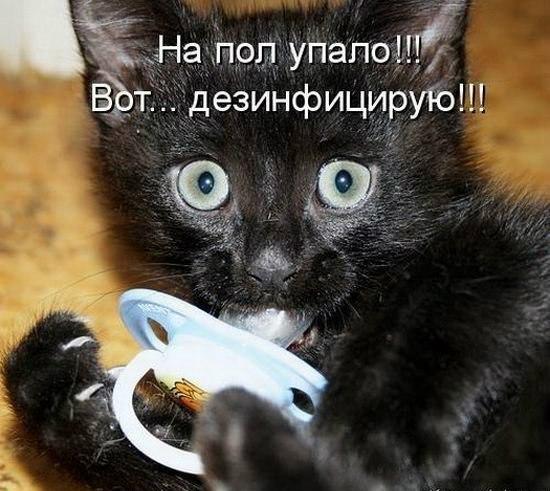 ГОВОРИМ ОБО ВСЕМ - Страница 3 W6FLlvWaiF8