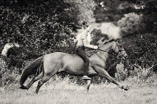 Девушка верхом на лошади