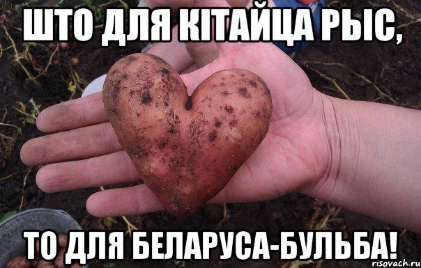 http://cs618726.vk.me/v618726515/13b/4fEMZcWLyTs.jpg
