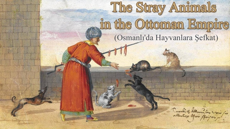 Osmanlı'da Hayvanlara Şefkat (The Stray Animals in the Ottoman Empire)