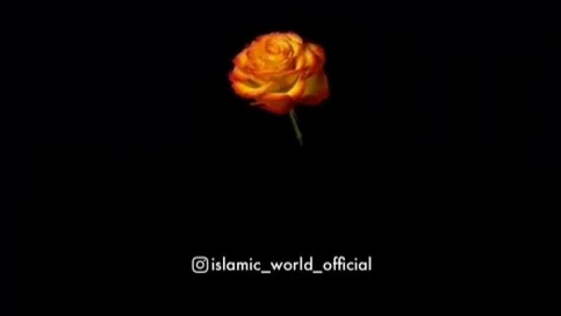 Молитесь мусульмане