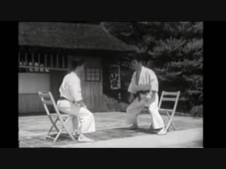 Биео.  karate-do self defence.
