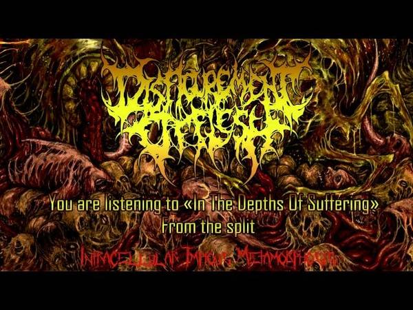 Disfigurement Of Flesh In The Depths Of Suffering NEW SONG 2016