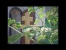 Вехи истории Боровск Выпуск 3 Боярыня Морозова 2013г